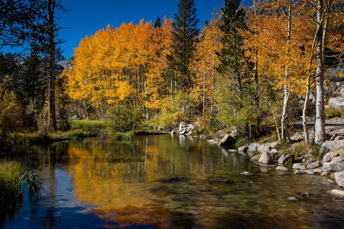 Bishop Creek, near Sabrina Lake
