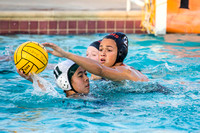 WHS Water Polo vs MSJHS